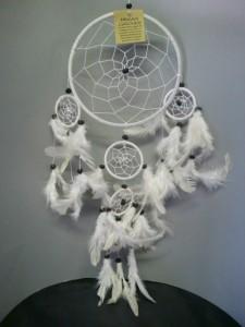 dromenvanger-witte-veren